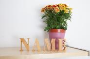 Namen aus Holzbuchstaben 8 cm - 15 Buchstaben