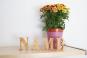 Namen aus Holzbuchstaben 8 cm - 5 Buchstaben