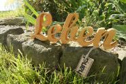 "Holzbuchstaben ""Leben"""